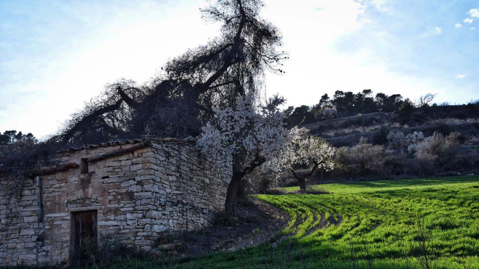 12.03.2017   Vallfogona de Riucorb -  Ramon Sunyer