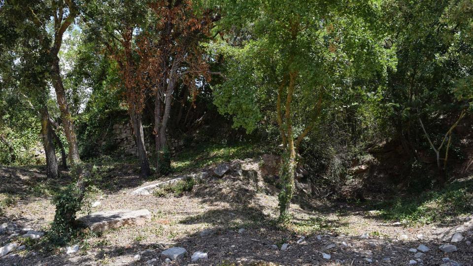 16.07.2017 Àrea de lleure la Font Voltada  Passanant -  Ramon Sunyer