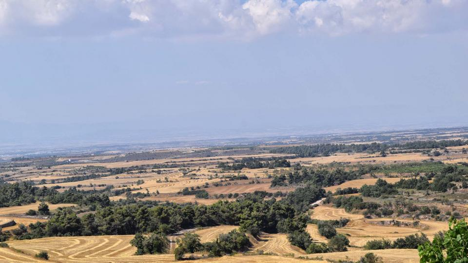 16.07.2017 paisatge  Passanant -  Ramon Sunyer