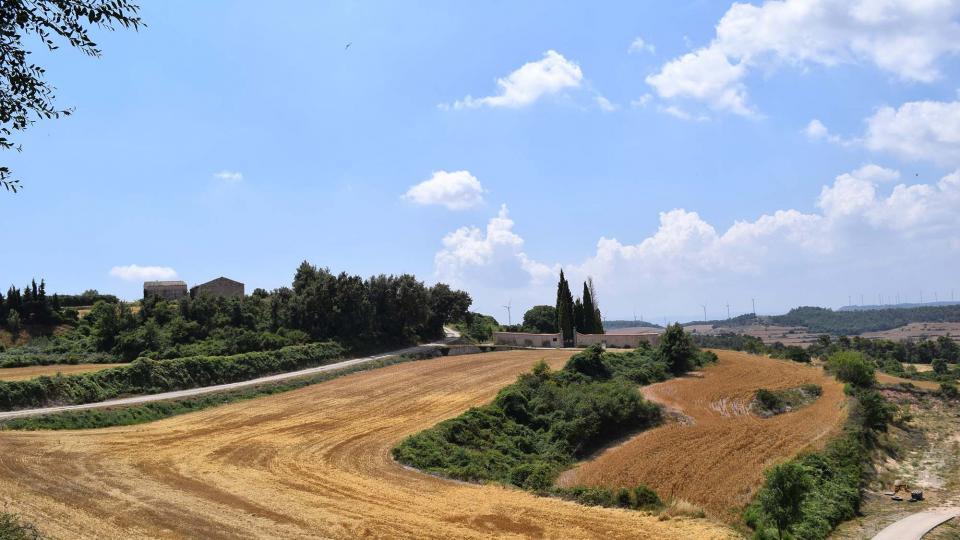 16.07.2017 cementiri  Belltall -  Ramon Sunyer