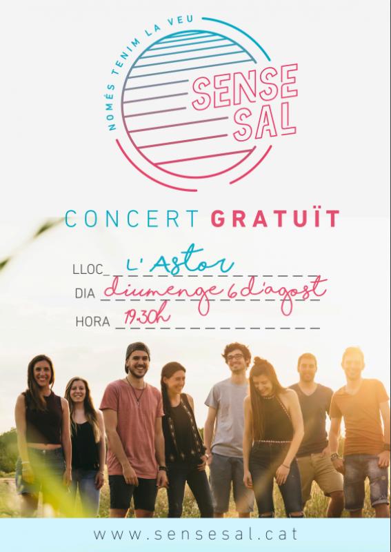 cartell Concert de Sense Sal