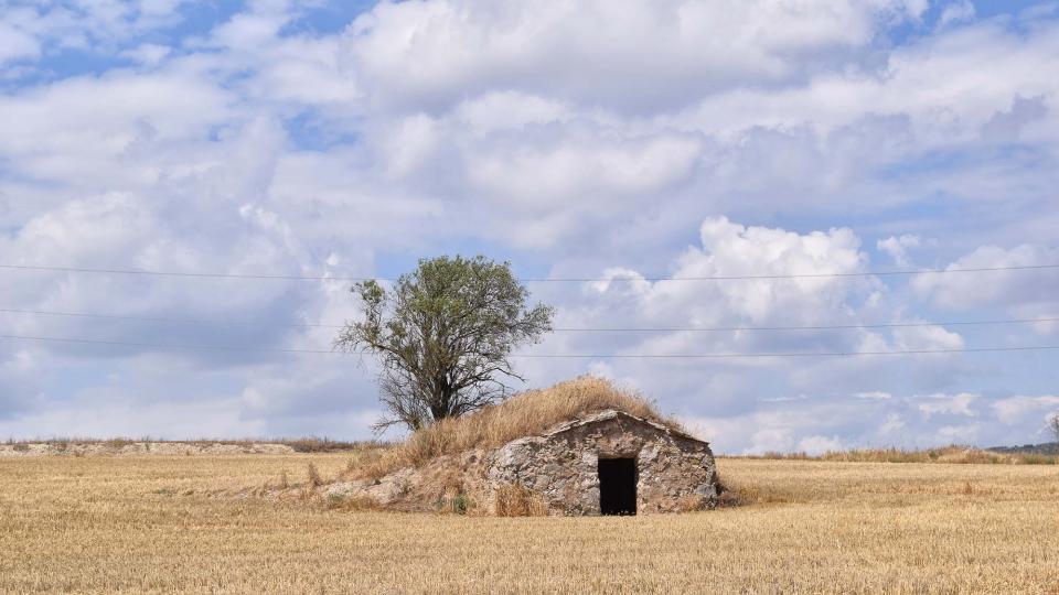 09.07.2017 cabana  Torà -  Ramon Sunyer
