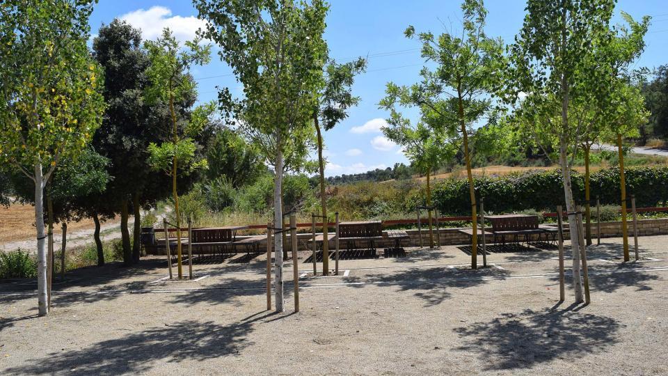Parque de Naixement del Sió - Autor Ramon Sunyer (2017)