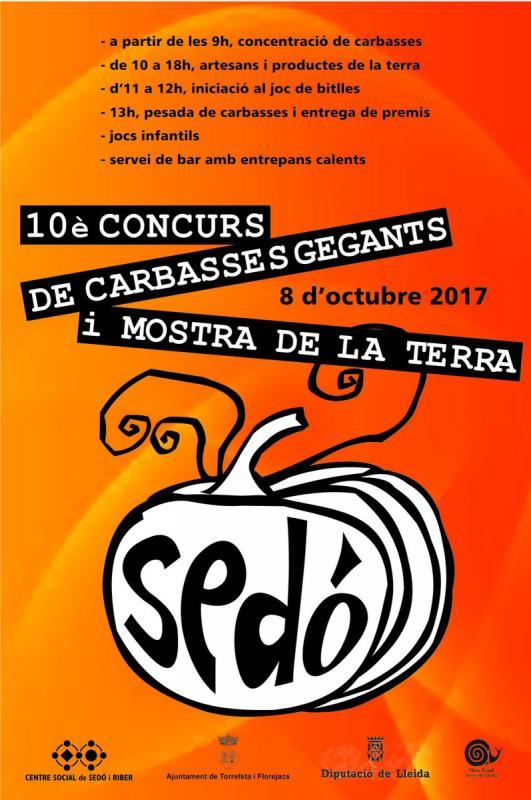 cartell 10è Concurs de Carbasses Gegants de Sedó