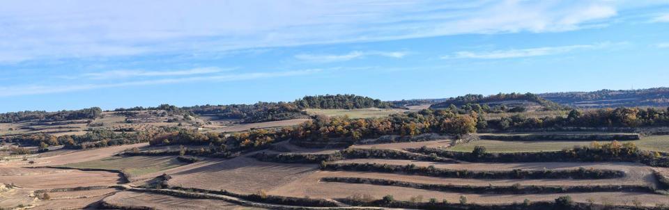 03.12.2017 paisatge dels Comalats  Montornès de Segarra -  Ramon Sunyer