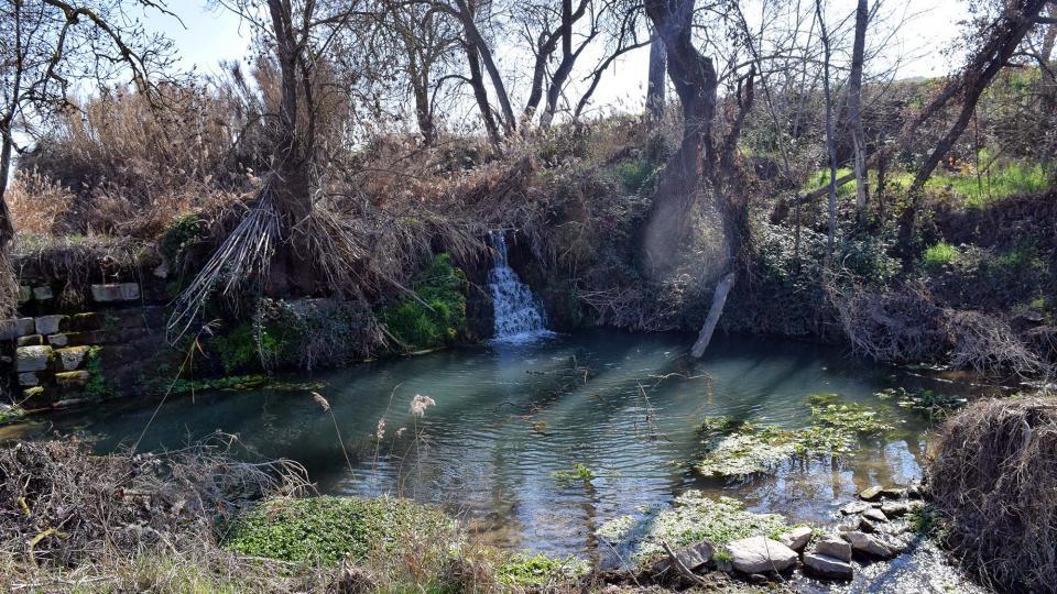 Espai fluvial Peixera de la Prenyanosa