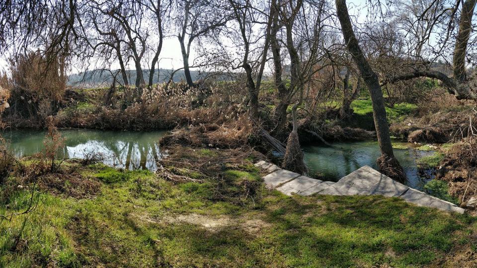 Riu de Peixera - Autor Ramon Sunyer (2018)
