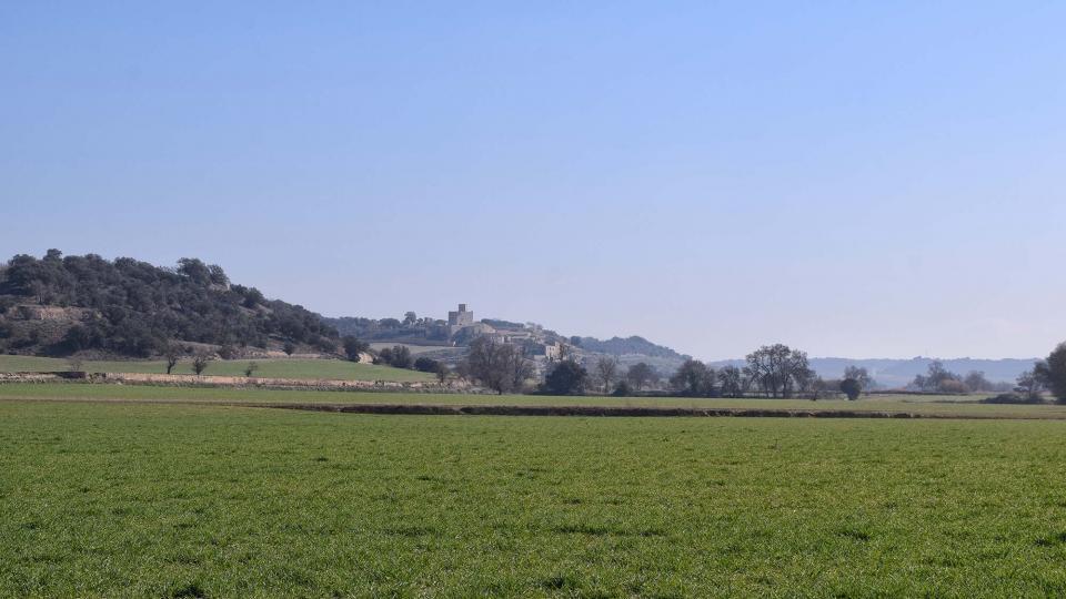25.02.2018 paisatge  Malgrat -  Ramon Sunyer