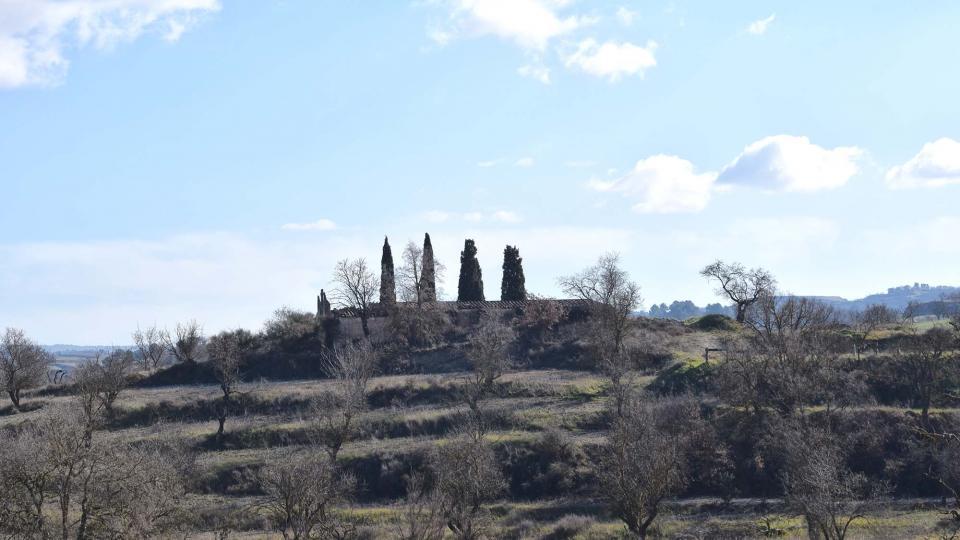 28.01.2018 Paisatge  Sant Pere dels Arquells -  Ramon Sunyer