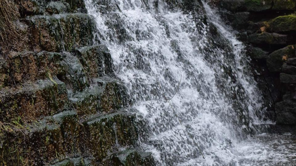 Espai fluvial  Peixera de la Puda - Autor Ramon Sunyer (2018)