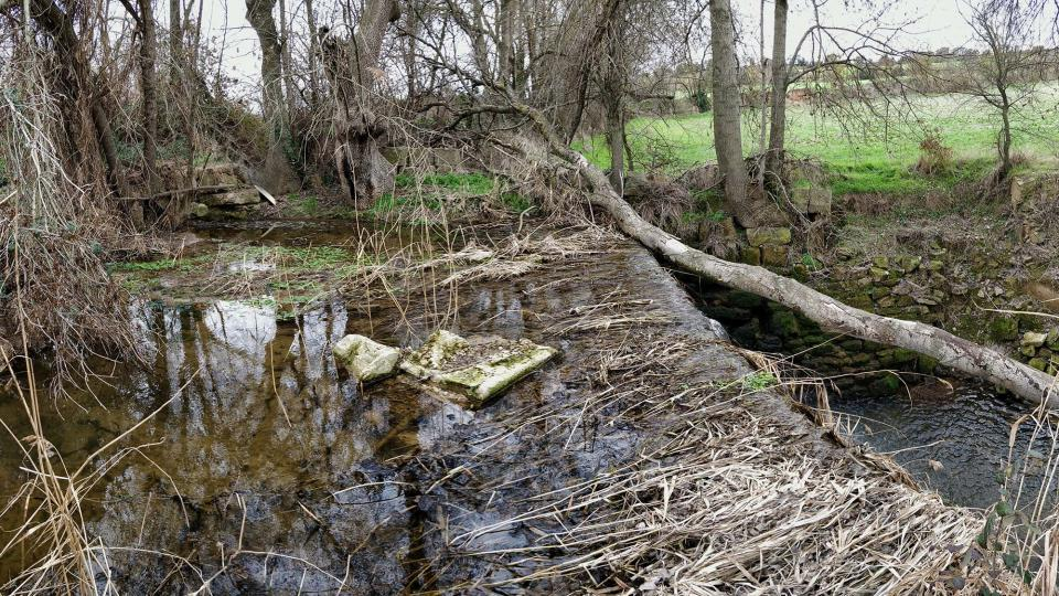 04.03.2018 Peixera de la Puda al riu Sió  Concabella -  Ramon Sunyer