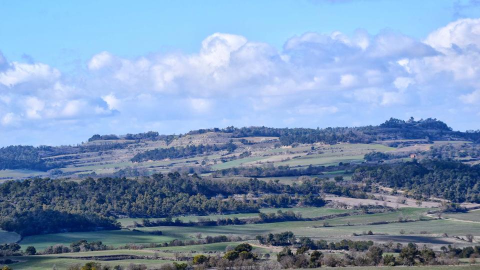 07.03.2018 paisatge  Talavera -  Ramon Sunyer