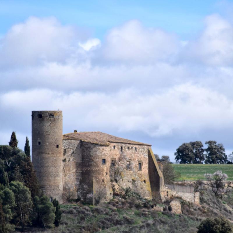 11.03.2018 castell  Castellmeià -  Ramon Sunyer