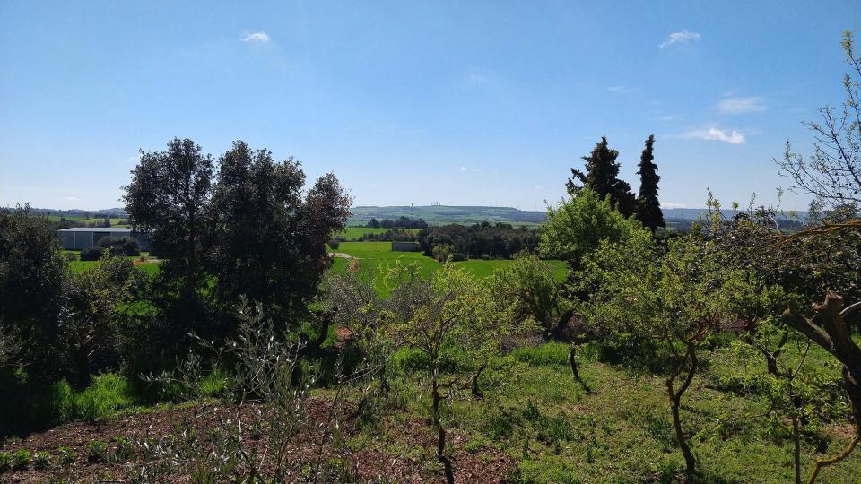 15.04.2018 paisatge  La Rabassa -  Ramon Sunyer