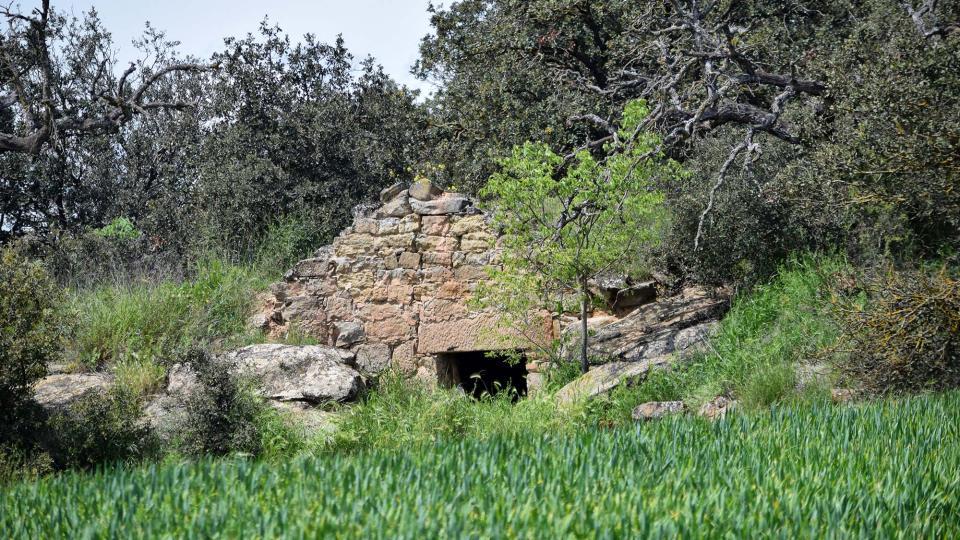 30.04.2018 cabana  Les Pallargues -  Ramon Sunyer