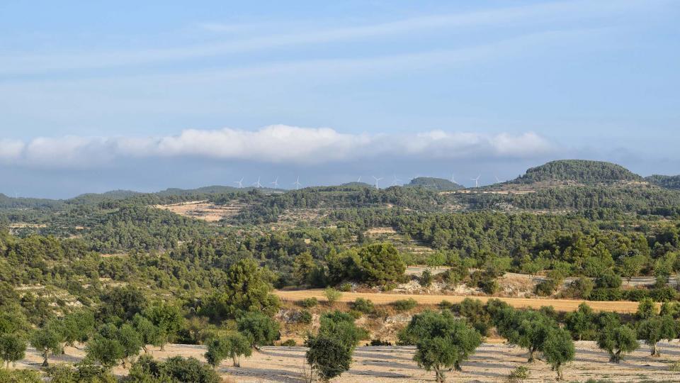 12.08.2018 paisatge  Maldà -  Ramon Sunyer