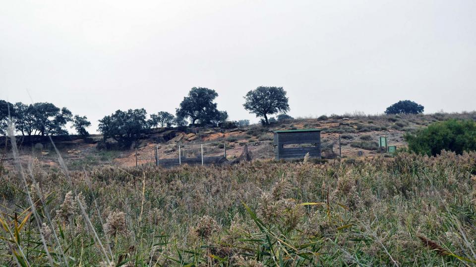 21.10.2018 Aiguamolls de la Serra de Queralt  Sisteró -  Ramon Sunyer