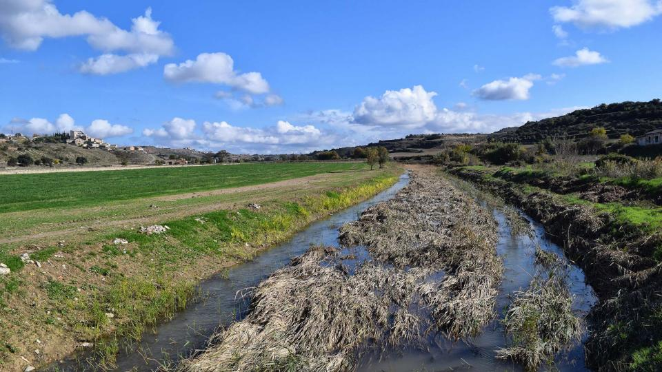 16.11.2018 El riu Ondara  La Móra -  Ramon Sunyer