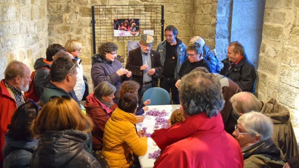 03.11.2018 Esbrinant safrà  Santa Coloma de Queralt -  Ramon Sunyer