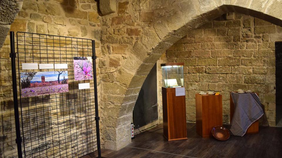 03.11.2018 Exposició Som Terra de Safrà  Santa Coloma de Queralt -  Ramon Sunyer