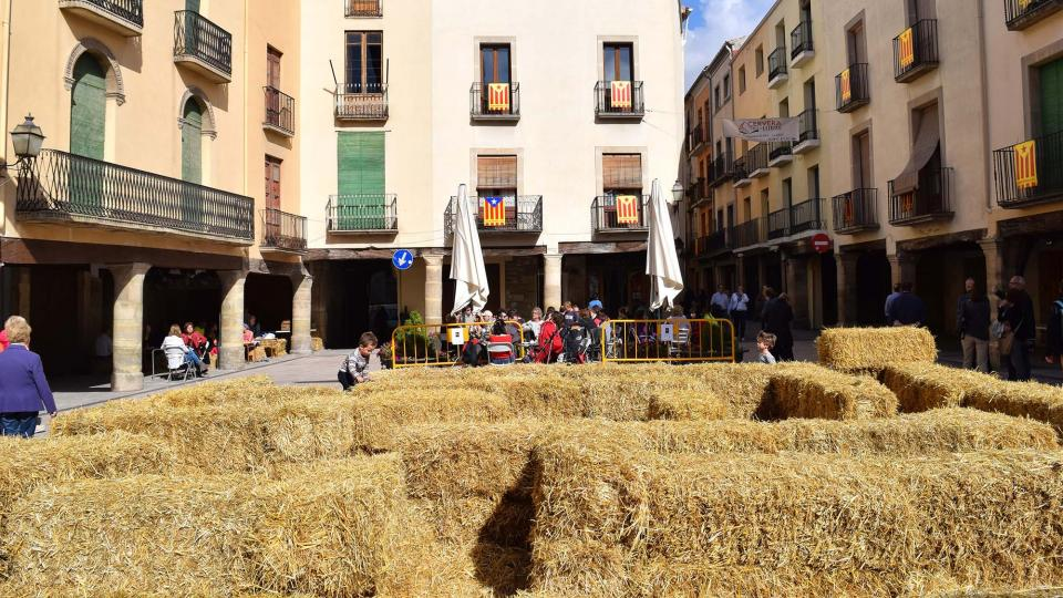 23.10.2016 Plaça Major  Cervera -  Ramon Sunyer