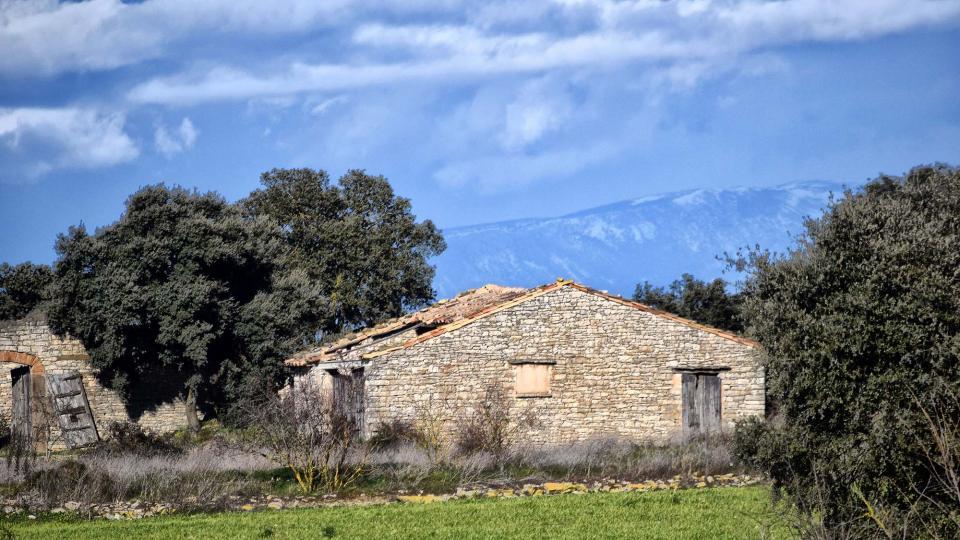 27.01.2019 cabana  Sant Ramon -  Ramon Sunyer