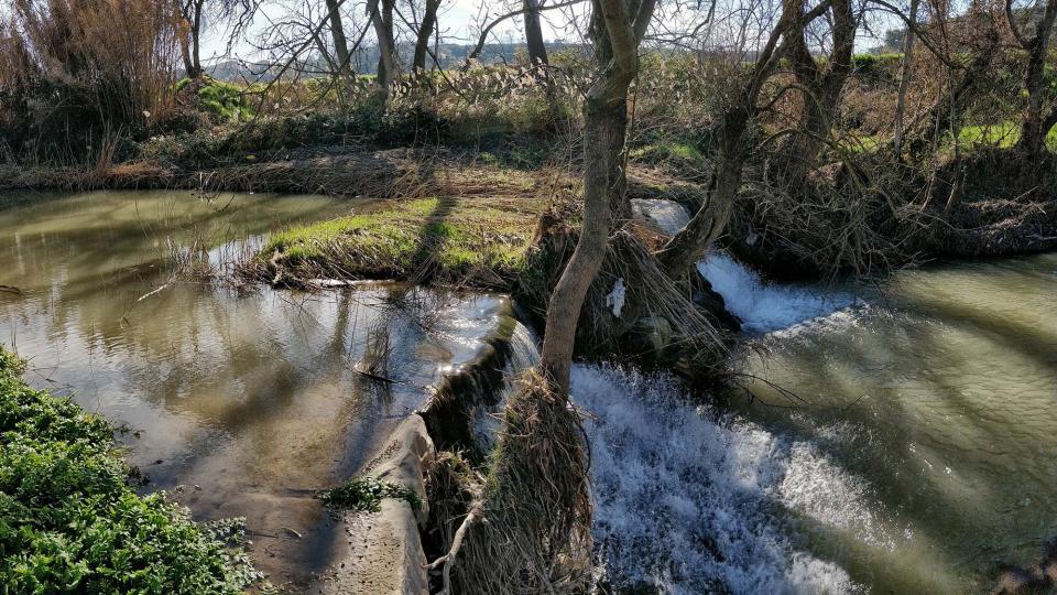 10.02.2019 Peixera de la Prenyanosa al riu Sió  La Prenyanosa -  Ramon Sunyer