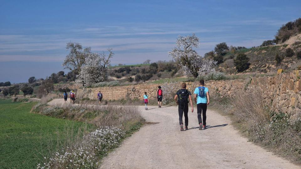 10.03.2019 XX Marxa dels castells  Malgrat -  Ramon Sunyer
