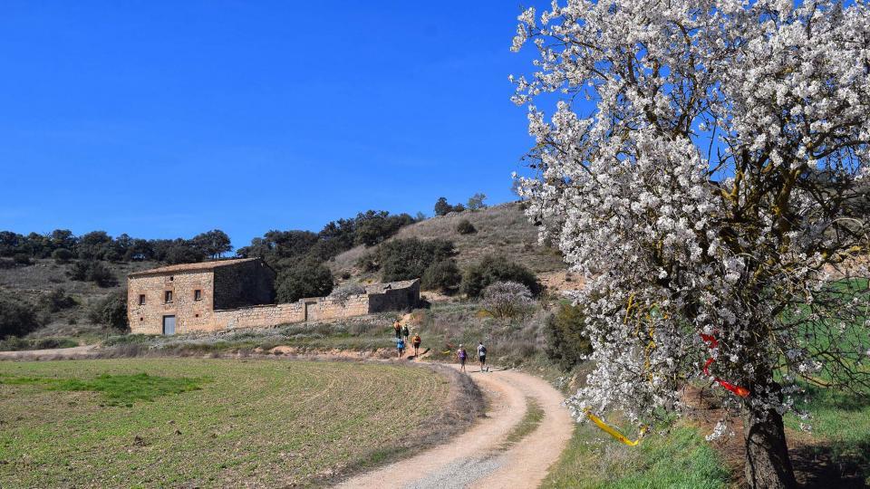 10.03.2019 XX Marxa dels castells  Tudela -  Ramon Sunyer