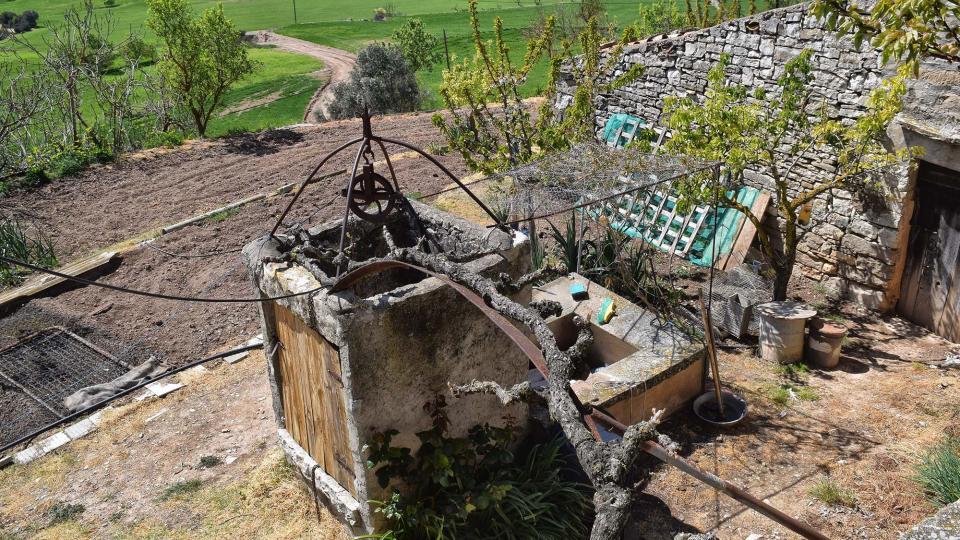 07.04.2019 hort  Alta-riba -  Ramon Sunyer