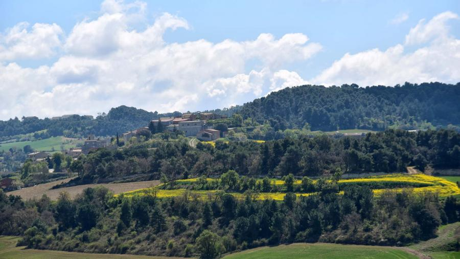 Ruta de senderismo de Montpalau - Montlleó - Palamós - La Rabassa - Montpalau - Autor Ramon Sunyer (2019)
