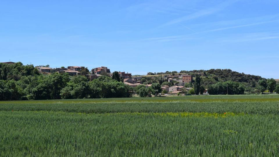 12.05.2019   Castellnou d'Oluges -  Ramon Sunyer