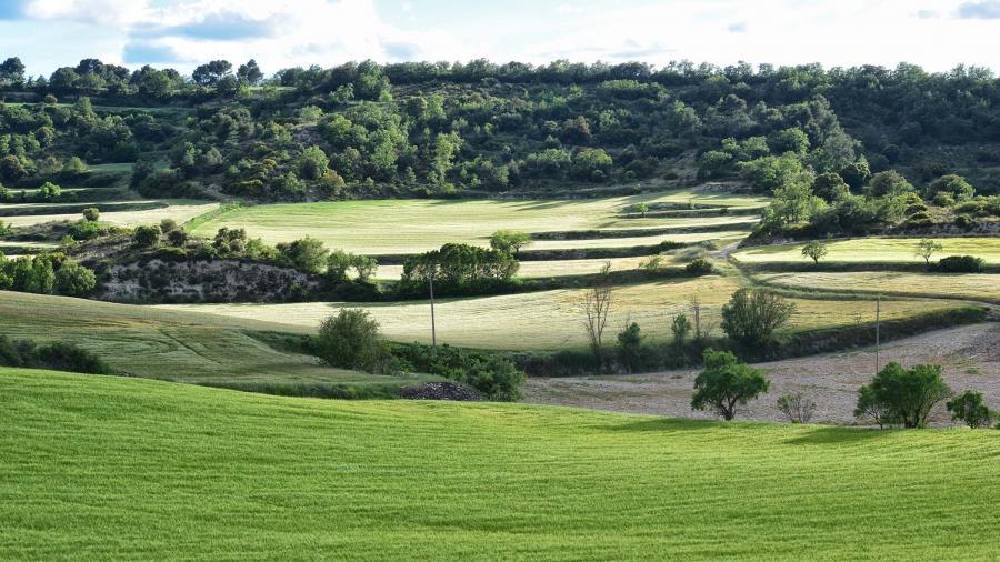 Biking trail of Turons de la Segarra - Author Ramon Sunyer (2019)
