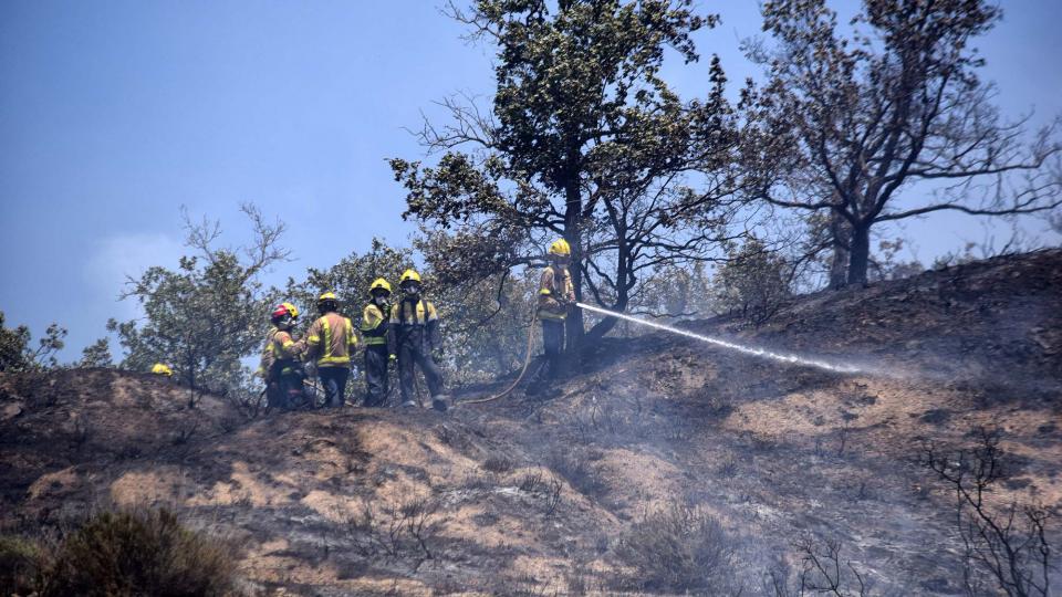 Sufocant les restes del foc - Biosca
