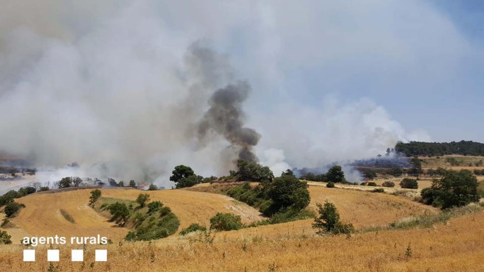 Incendi agrícola a Talavera