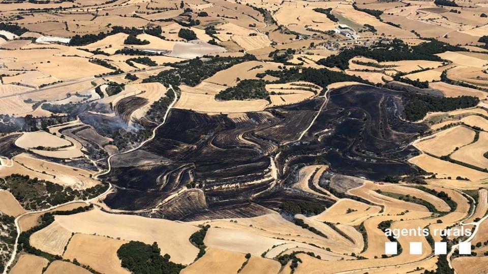 Superfície afectada a l'incendi de Talavera -