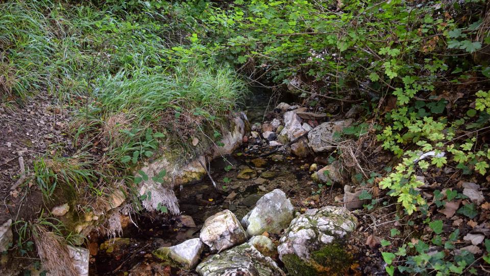 11.09.2019 Riu de sant Magí  Rocamora i Sant Magí de la Brufaganya -  Ramon Sunyer