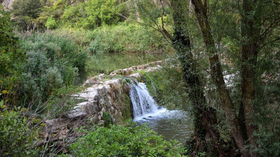 11.09.2019 Peixera del Gaià  Santa Perpètua de Gaià -  Ramon Sunyer