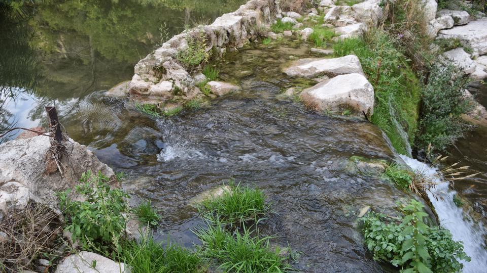 Espacio fluvial  Resclosa del molí d'en Soler - Autor Ramon Sunyer (2019)