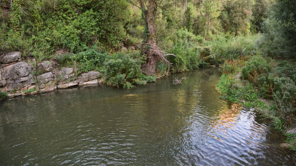 Espai fluvial  Resclosa del molí d'en Soler - Autor Ramon Sunyer (2019)