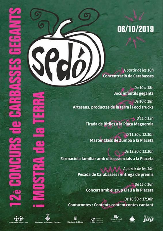 cartell 12è Concurs de Carbasses Gegants de Sedó