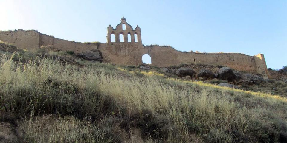 Castell de Sanaüja -