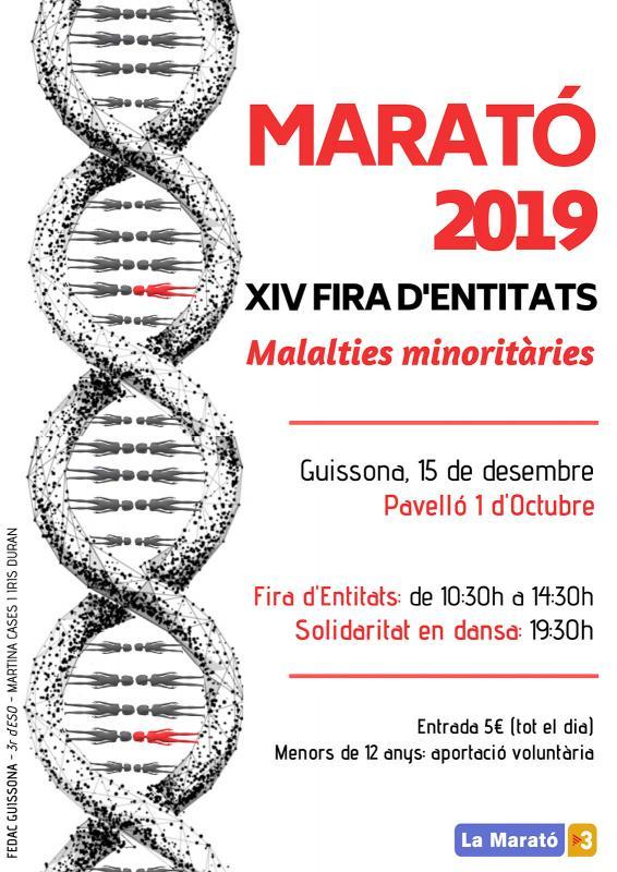 cartell Festa d'Entitats Promarató a Guissona