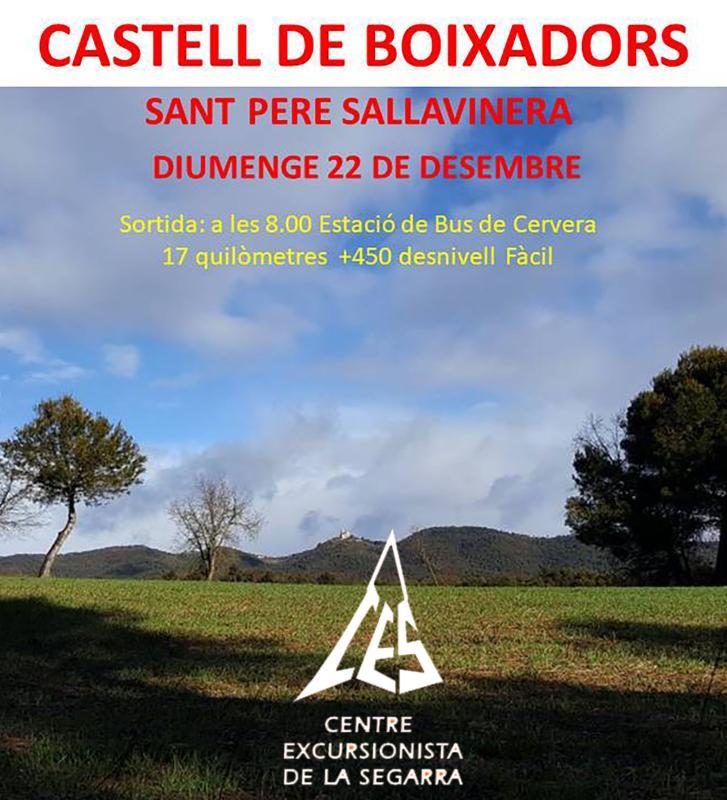 cartell Caminada al Castell de Boixadors