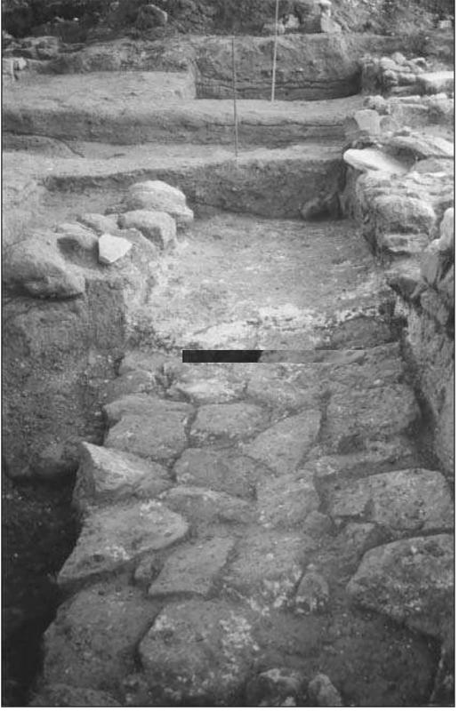 Estructura anterior a la fundació de la vila - Biosca