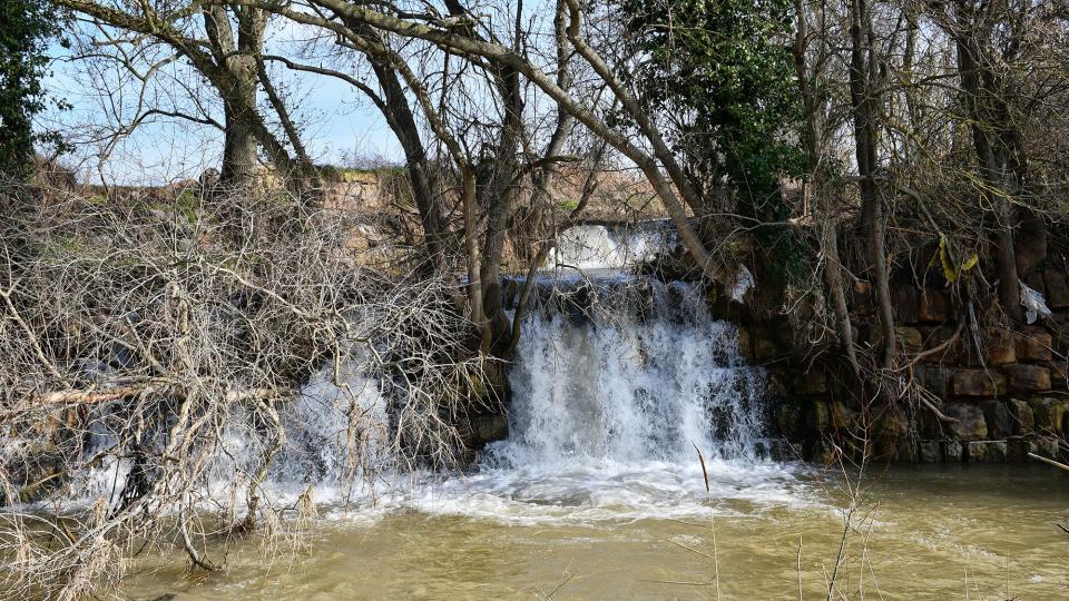 09.02.2020 Espace fluvial Peixera de Sedó  214 - Auteur Ramon Sunyer