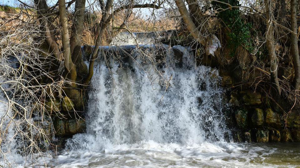 Espace fluvial  Peixera de Sedó - Auteur Ramon Sunyer (2020)