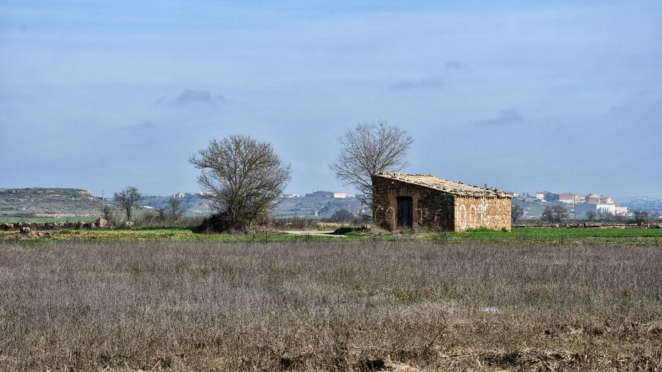 09.02.2020 cabana  Les Pallargues -  Ramon Sunyer