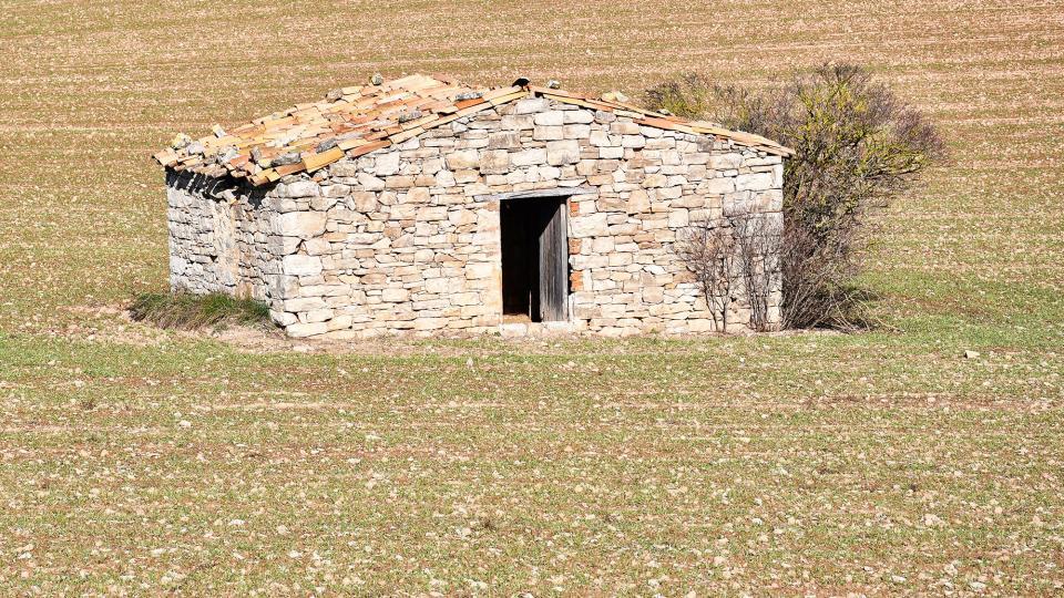 04.01.2020 cabana  Sant Martí Sesgueioles -  Ramon Sunyer