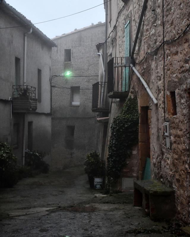 03.01.2020   Ferran -  Ramon Sunyer